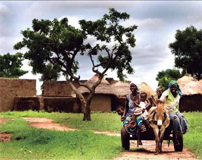 Las familias agricultoras producen el 70% de los alimentos a nivel mundial. Alessandra Benedetti (FAO)